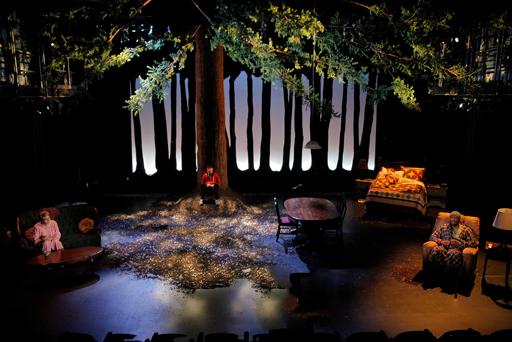Sagittarius Ponderosa by MJ Kaufman, Directed by Margot Bodelon, Yale School of Drama